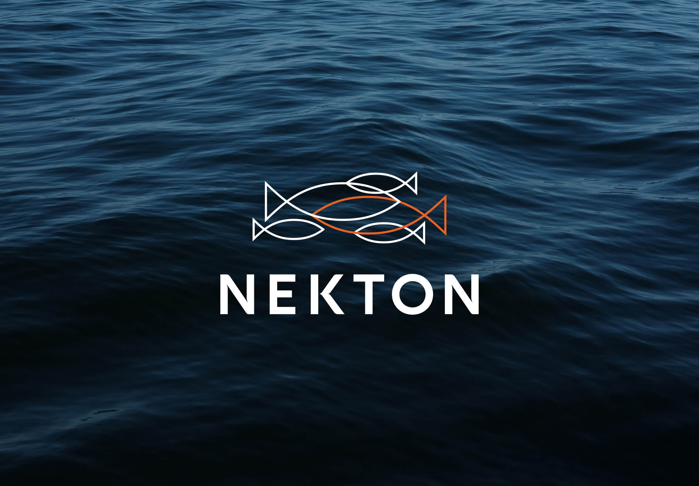 Nekton | Petchy